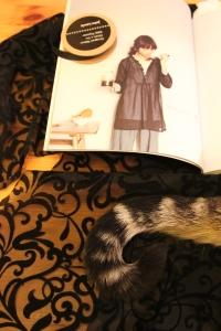 Dress G - Stylish Dress Book